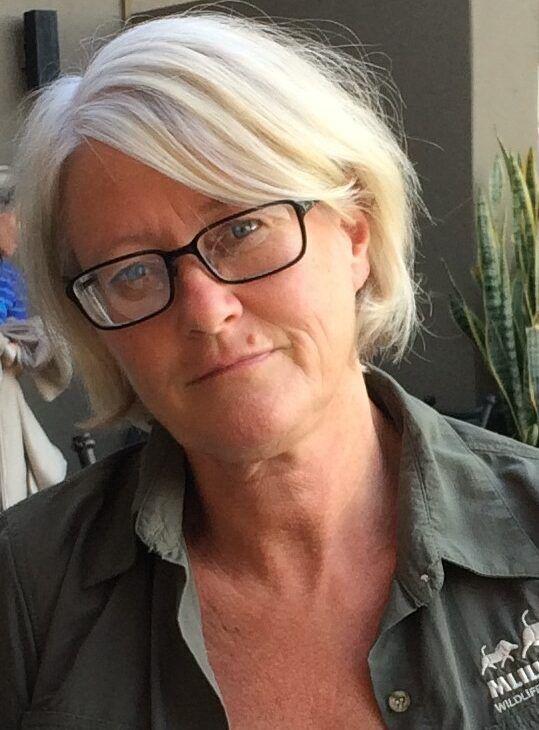 Elisabeth Ilskog